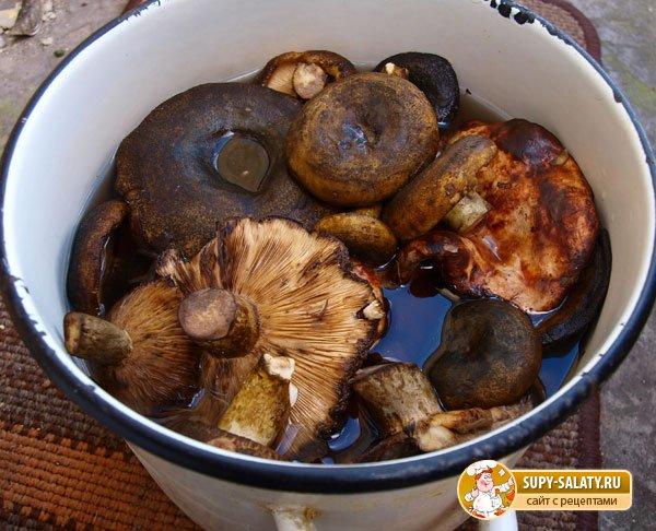 Рецепт приготовления груздей горячим способом