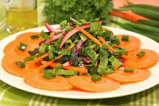 салат из крапивы, щавеля, лука и моркови