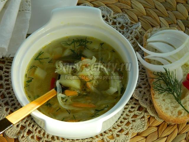 Суп из свежей капусты рецепты с фото