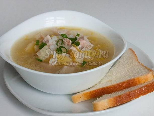 Суп из индейки. 2 отличных рецепта на любой вкус