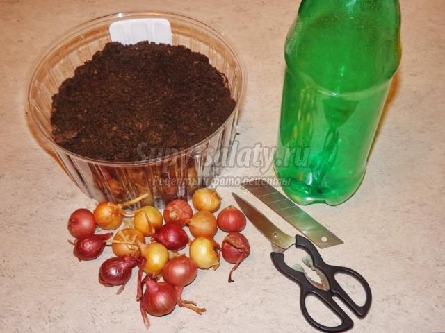 луковая елочка к Новому году для украшения кухни