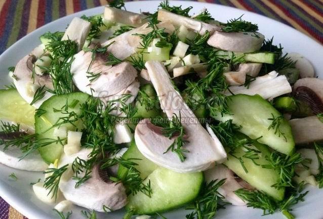 Пикантные салаты с сырыми грибами