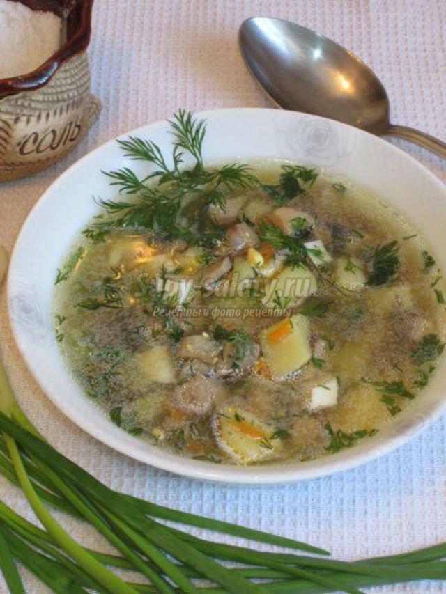грибной суп из шампиньонов постный пюре рецепт