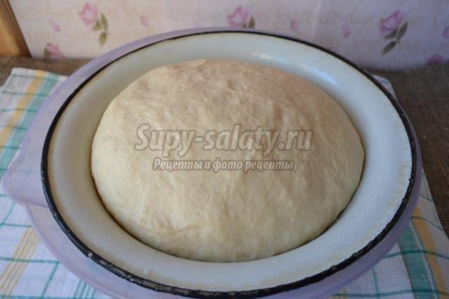 пирог с мясом и рисом. Крокодил