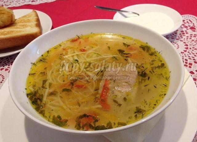 молдавский суп с домашней лапшой. Зама