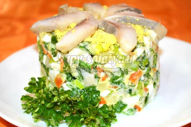 весенний овощной салат с сельдью