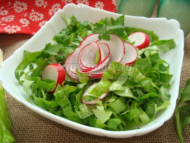 салат из редиса с молодым чесноком