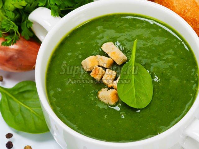 зеленый борщ. Лучшие рецепты