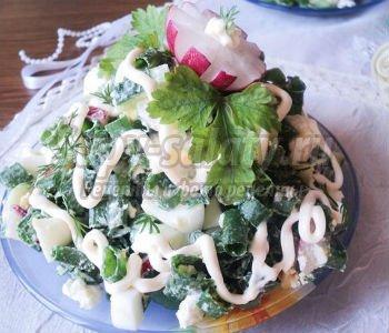 салат витаминный с домашним творогом