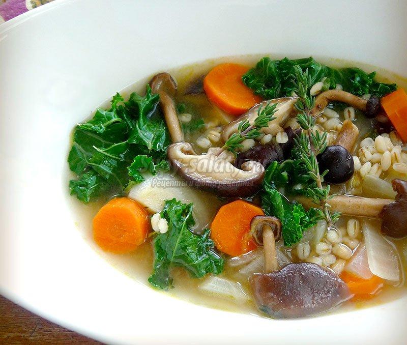 грибной суп рецепты приготовления грибных супов