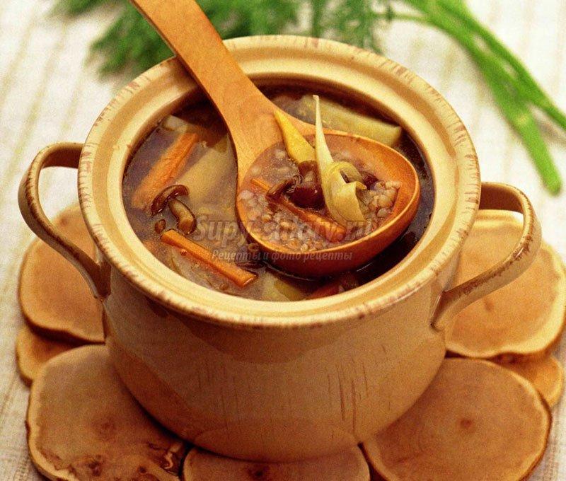Рецепт приготовления фаршированных перцев с фаршем и рисом с фото