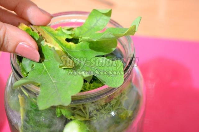малосольные огурцы с дубовыми листьями