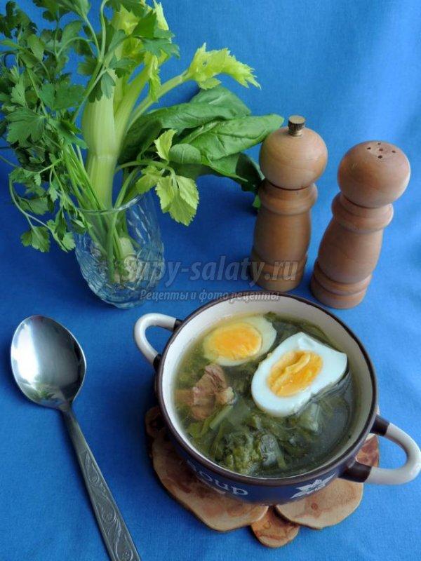 супы с говядиной и грибами рецепты с фото #10