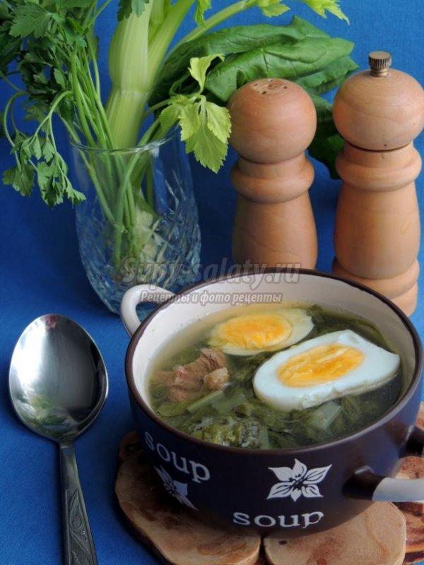 супы с говядиной и грибами рецепты с фото #12
