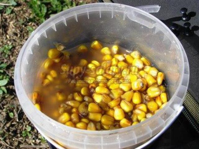 варим кукурузу для ловли сазана