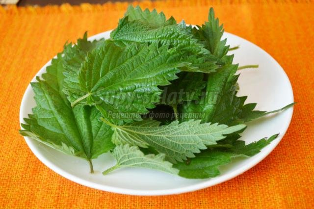зеленый борщ по-венгерски с ревенем и крапивой