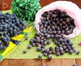 Мороженый виноград