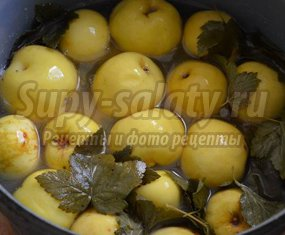 Отличный рецепт яблок моченых на зиму