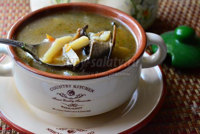 вкусный грибной суп из лесных грибов рецепт