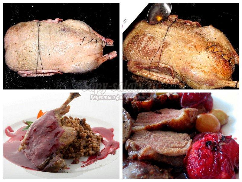 Как приготовить быстро и вкусно утку