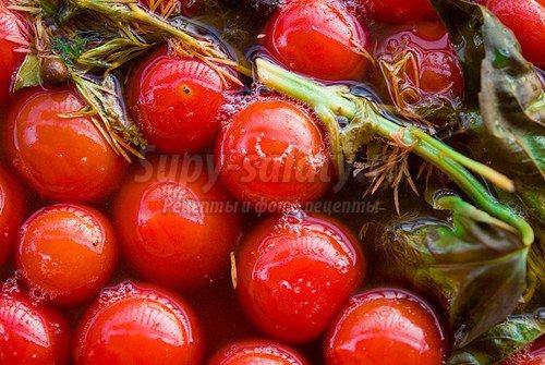 Помидоры на зиму: рецепты из спелых и зеленых плодов