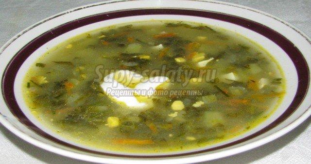рецепт зеленого борща с щавелем: популярные рецепты с фото