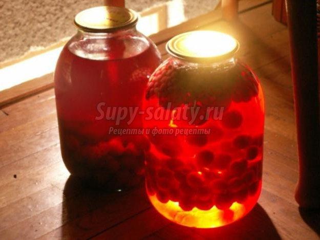 компот из винограда на зиму: популярные рецепты с фото