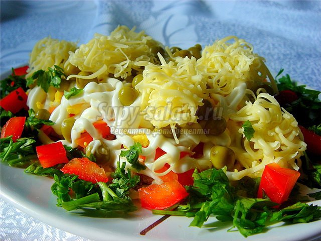 Салат с курицей и сыром. Рецепты с пошаговыми фото