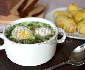 Суп со щавелем: пошаговые рецепты с фото