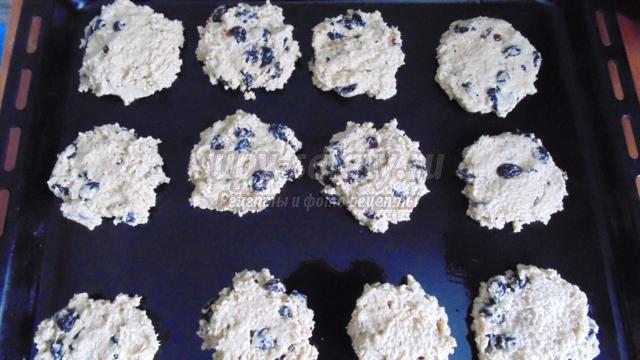 овсяное печенье с изюмом и имбирем