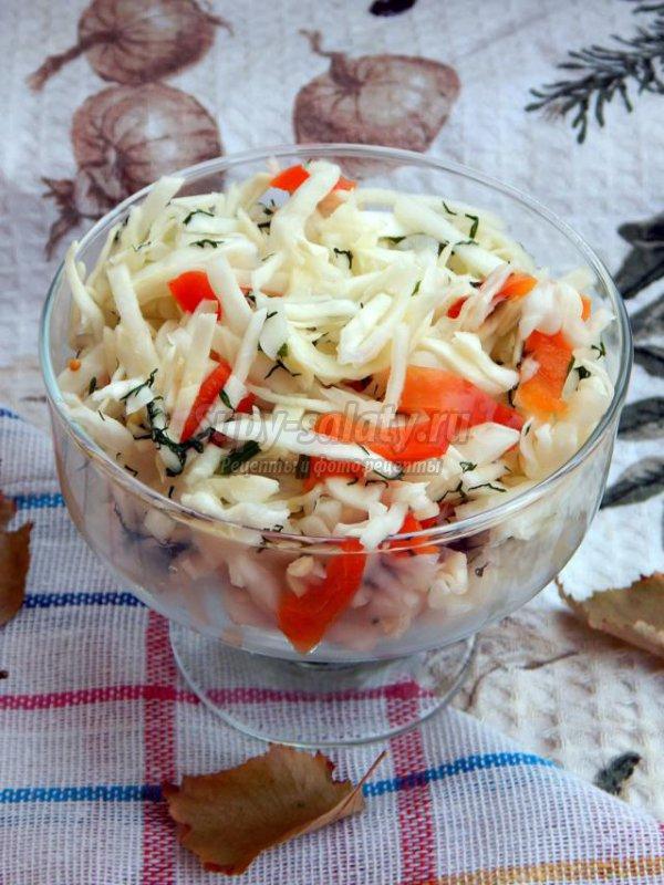 маринованная капуста с перцем за 3 часа