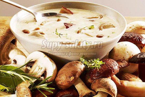 Суп из сушеных грибов. Самые аппетитные варианты