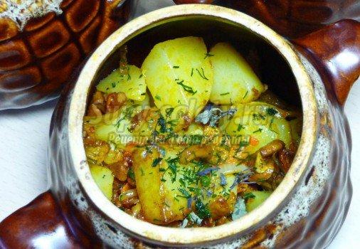 Картошка с грибами в духовке: лучшие рецепты с фото