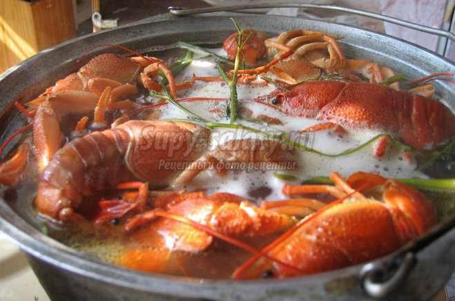 Как готовить раков? Варианты приготовления и кулинарные секреты