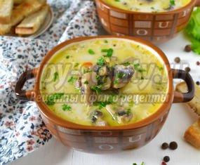 Суп с мясом. 10 лучших рецептов