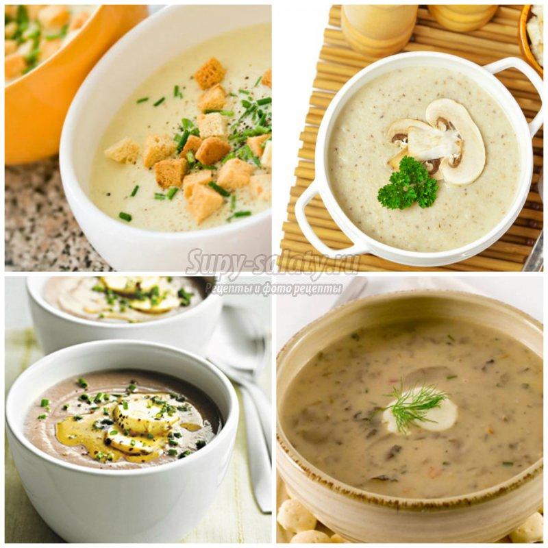 Грибной суп пюре: лучшие рецепты с фото.