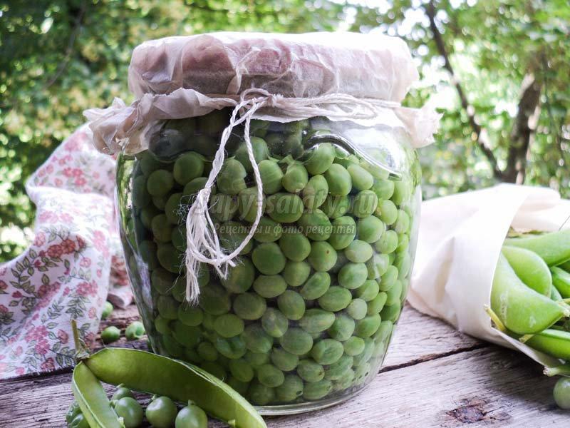 Горошек зеленый консервированный рецепты в домашних условиях на зиму 131
