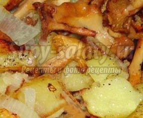 Лисички с картошкой: как приготовить? Подробные рецепты с фото