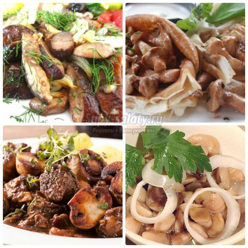 3. грибы с луком: готовим вкусно и просто. Подробные рецепты