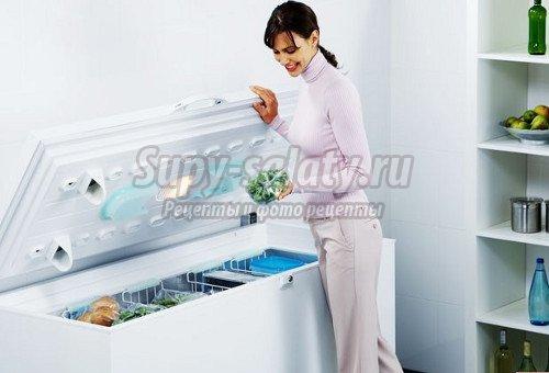 Выбираем холодильную камеру для дома