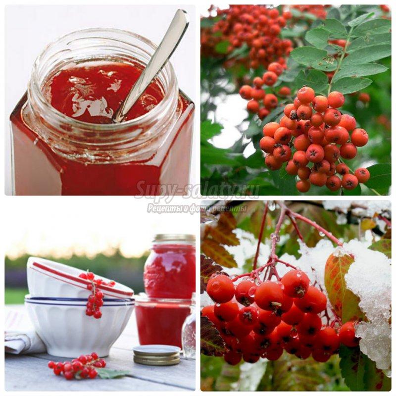 Варенье из красной рябины - вкусно и полезно.