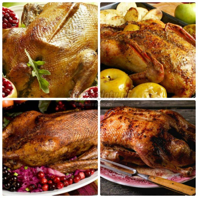 Как приготовить гуся на Рождество? Лучшие варианты приготовления