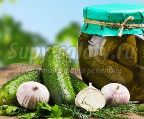Отличные рецепты соленых огурцов: фото-рецепты.