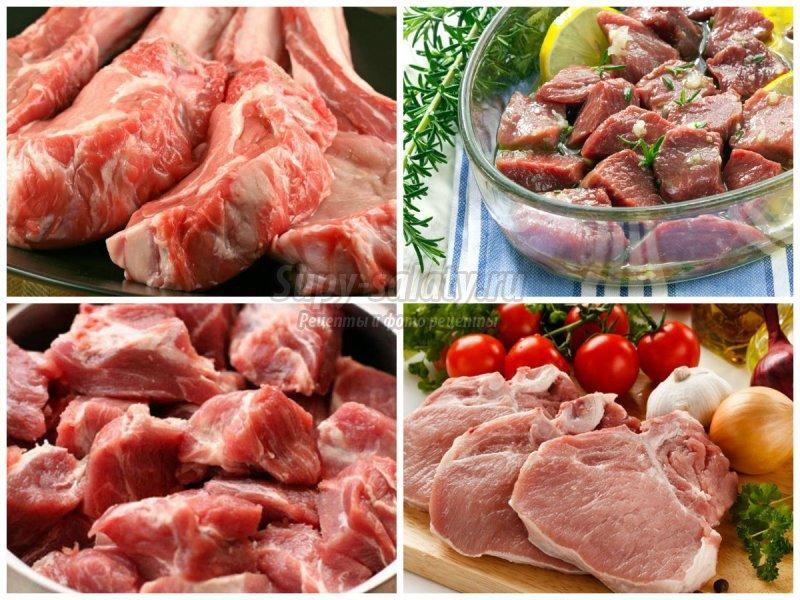 Мясо для шашлыка. Какое мясо лучше и как выбрать и замариновать правильно
