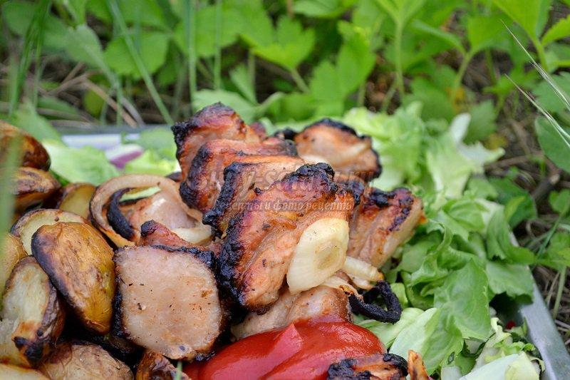 шашлык из свинины с киви рецепт