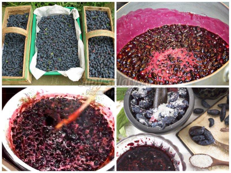«Пятиминутка» из жимолости: готовим вкусное варенье
