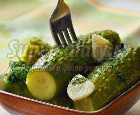 Малосольные огурцы быстрого приготовления: пошаговые рецепты с фото