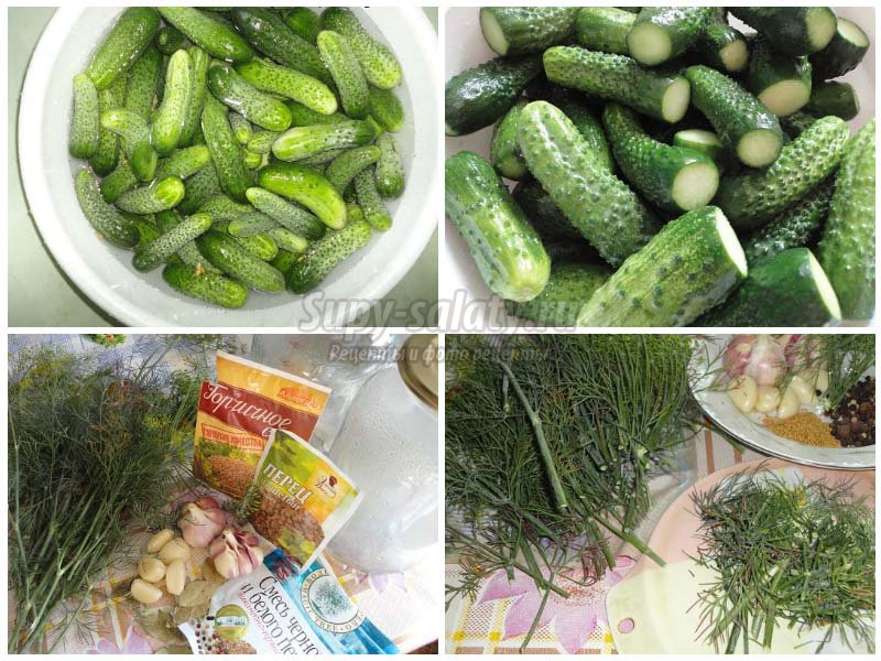 Рецепты засолки огурцов на зиму в банки с пошаговыми фото