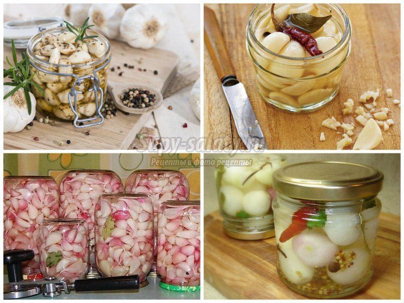 Очень вкусные рецепты приготовления чеснока на зиму и правила хранения
